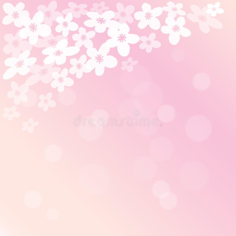 春天进展的樱桃树背景 向量例证