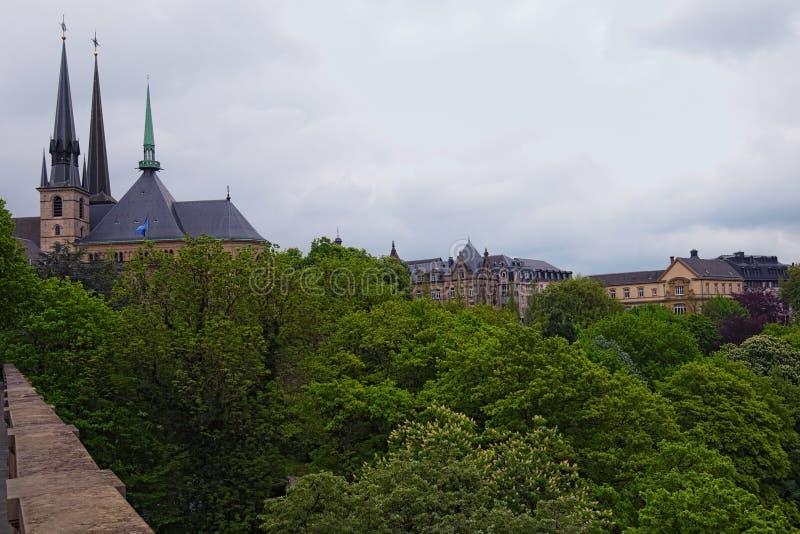 春天都市风景照片 大教堂Notre Dame在卢森堡市、葡萄酒大厦和美丽的庭院 卢森堡 库存图片