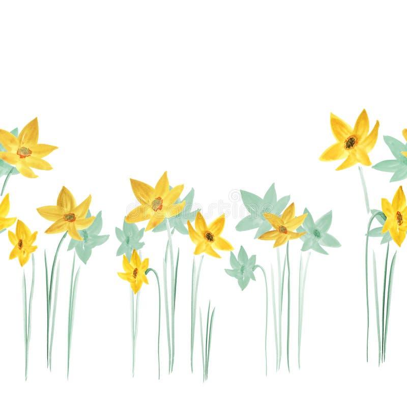 春天黄色和绿色花的无缝的样式在白色背景的 水彩 皇族释放例证