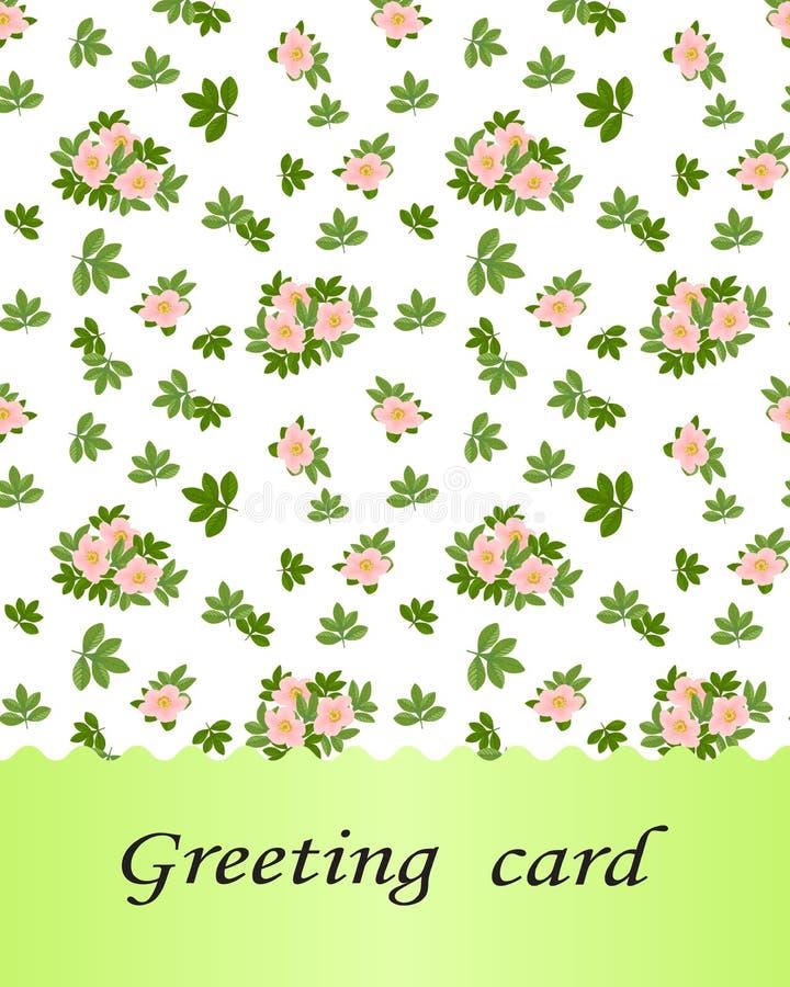 春天,夏天,女性概念 Potenti的小的桃红色花 皇族释放例证
