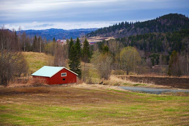 春天,空的农村挪威风景 库存图片