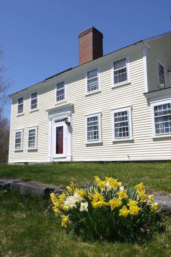 春天:有被日光照射了黄色黄水仙的殖民地房子 免版税库存照片