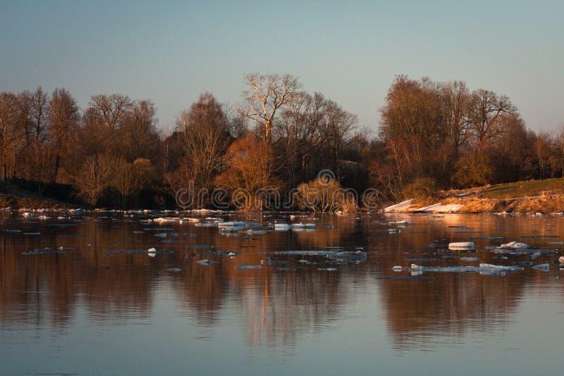 春天洪水在利耶卢佩河河 免版税库存图片