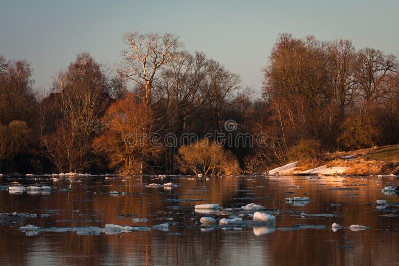 春天洪水在利耶卢佩河河 免版税图库摄影