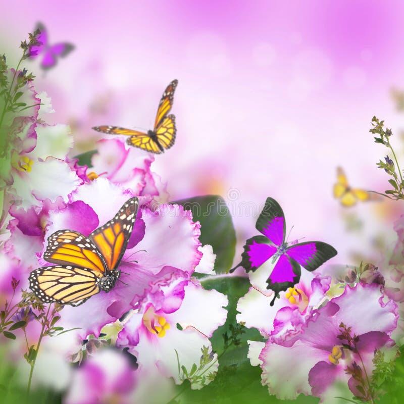 春天紫罗兰惊人的花束  免版税库存图片