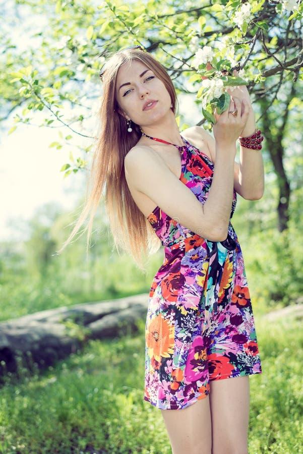 春天&美丽的白肤金发的小姐俏丽的女孩的图片有站立在开花的树下&看照相机的蓝眼睛的 库存图片