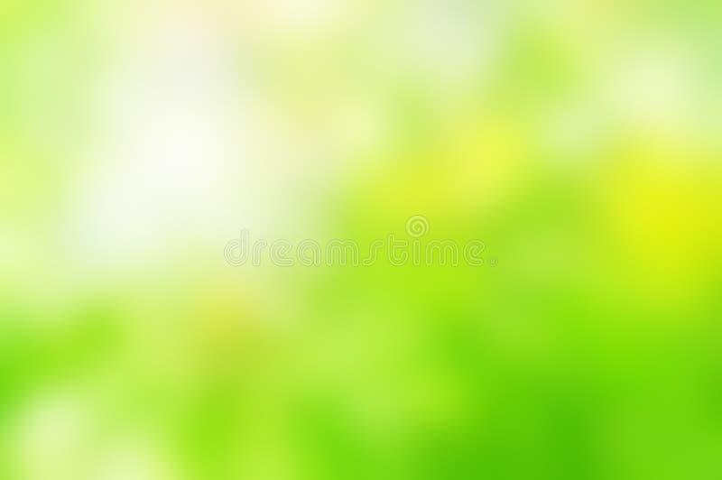春天绿色背景迷离 免版税库存图片