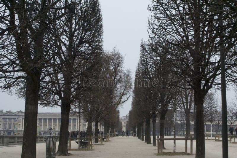 巴黎春天 免版税库存图片