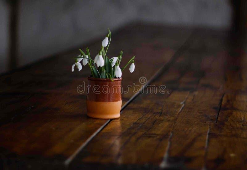 春天snowdrops美丽的花束在黏土花瓶的在一张木桌上 库存图片