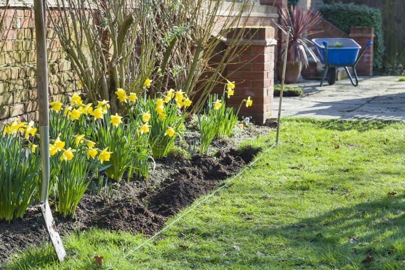 春季园艺,拓宽花园花床或边境,英国 免版税库存照片