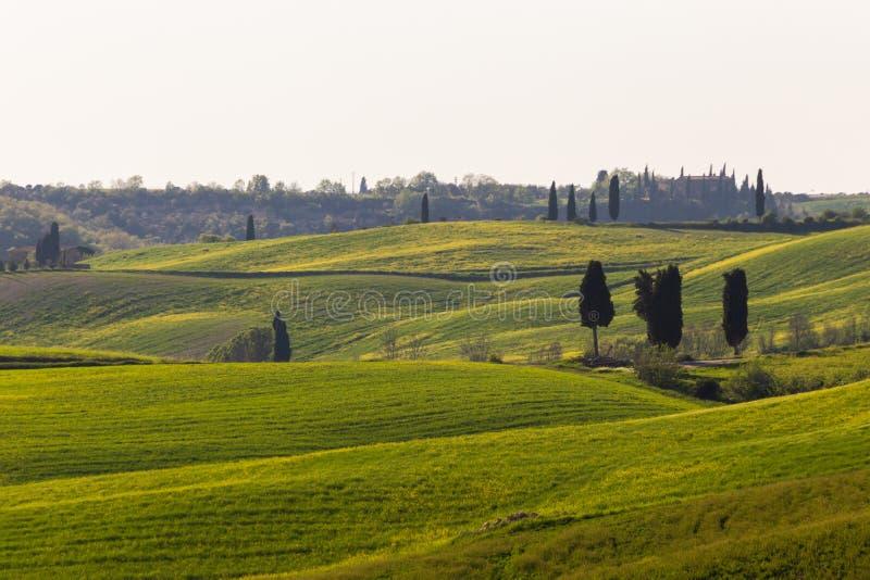 春季托斯卡纳美丽景观,波浪青山,孤树孤木,农舍 意大利托斯卡纳 免版税图库摄影