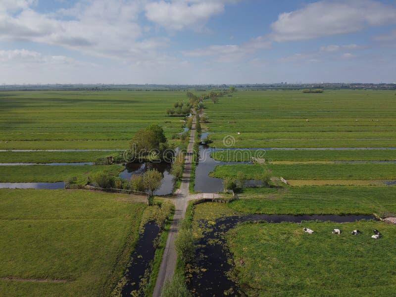 春季阳光明媚的日子,荷兰的花园 航视 库存照片