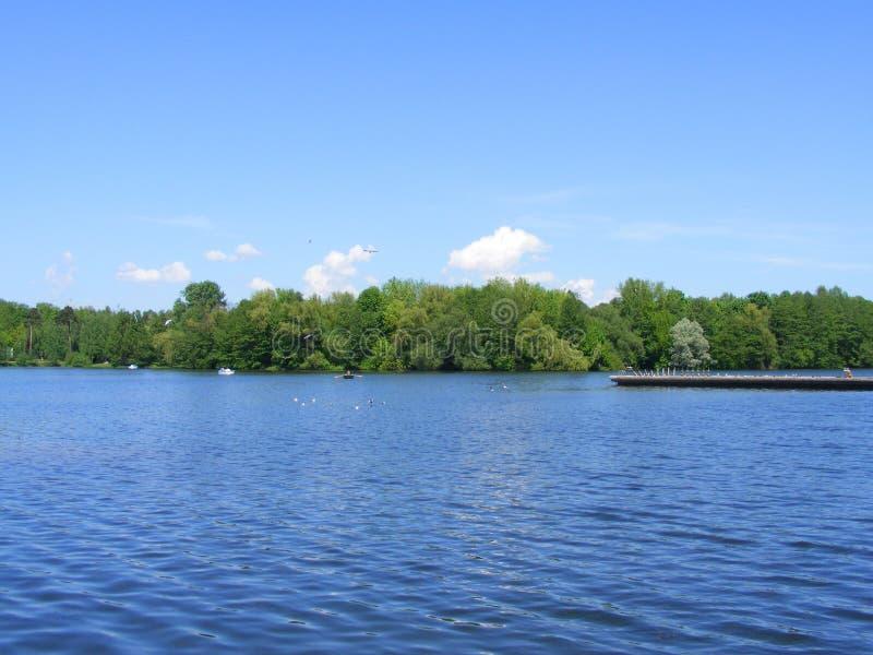 春日在湖附近的公园,公园的本质在米斯克,白俄罗斯 图库摄影