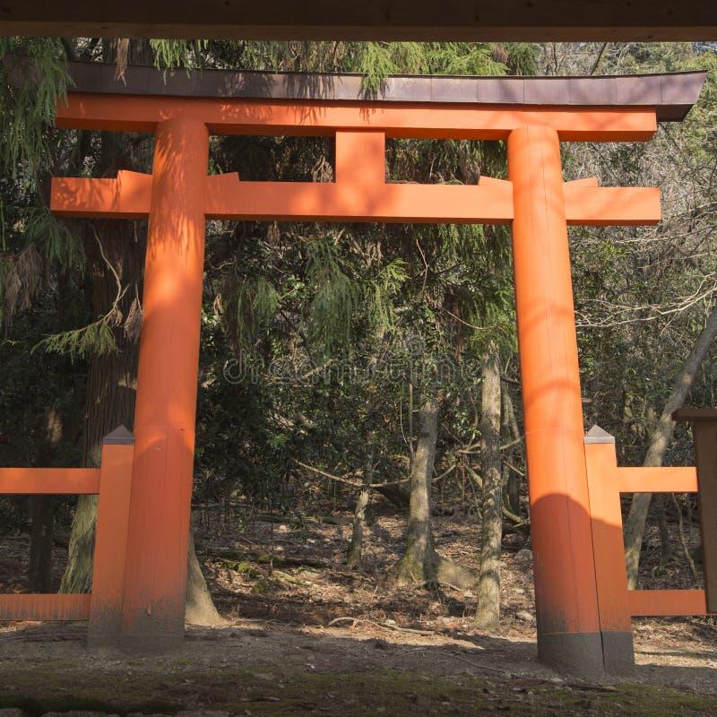 春日市Taisha寺庙、torii、樱花和石灯笼在奈良在日本 图库摄影