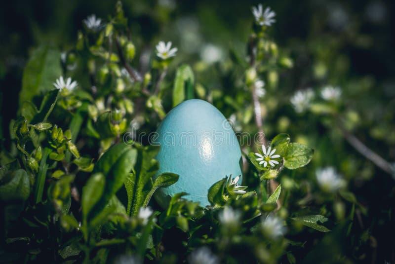 春绿村庭院和复活节彩蛋 免版税图库摄影