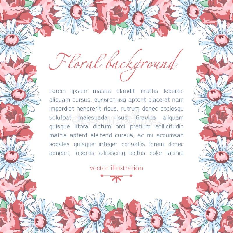 春黄菊和玫瑰色花方形的花框架,导航花卉背景,毗邻,缠绕 拉长的芽桃红色玫瑰花 库存例证