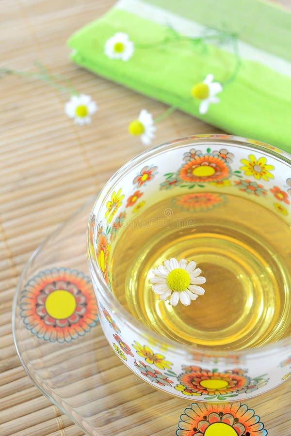春黄菊杯子茶 免版税库存图片