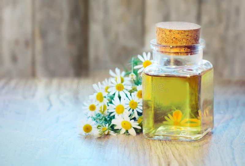 春黄菊有花的油瓶在木背景 库存图片