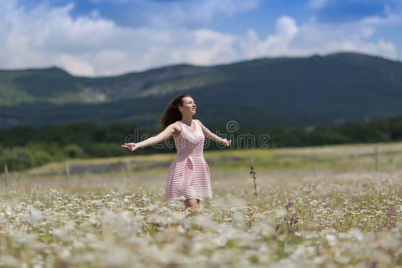 春黄菊领域的女孩与被伸出的胳膊 图库摄影