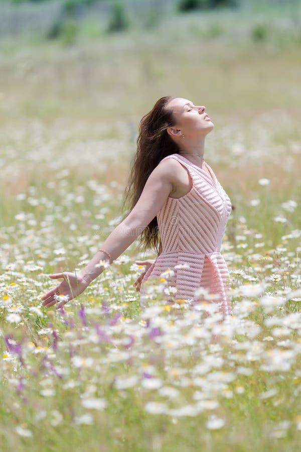 春黄菊领域的女孩与被伸出的胳膊 库存照片