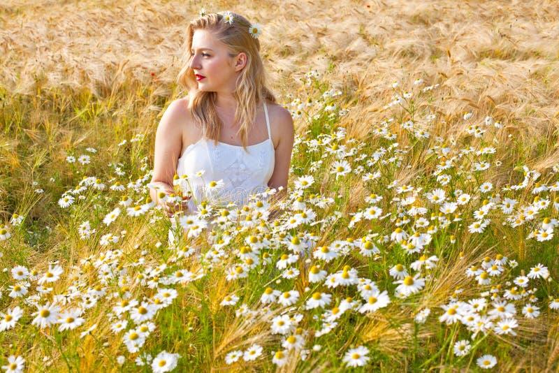 春黄菊领域的白肤金发的女孩 免版税库存图片