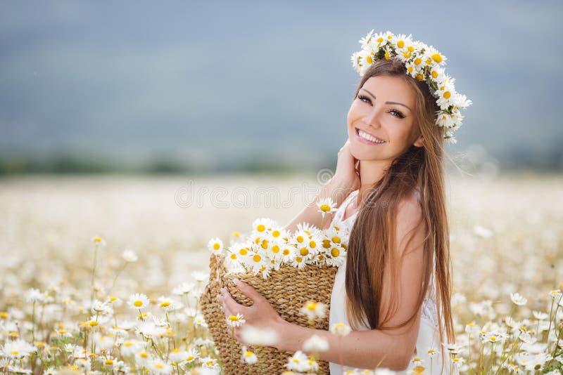 春黄菊领域的美丽的女孩 免版税库存照片