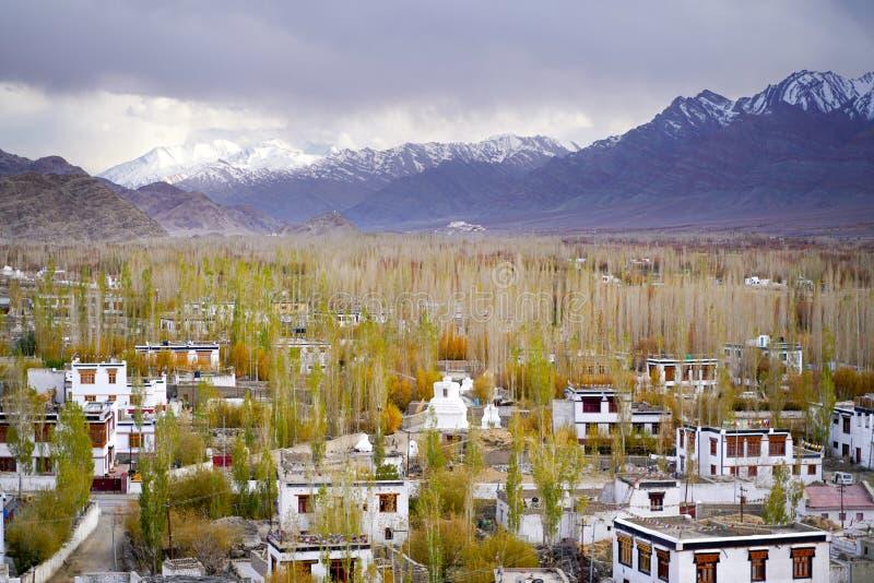 是在西藏样式的修造的印度镇Thiksey 库存图片