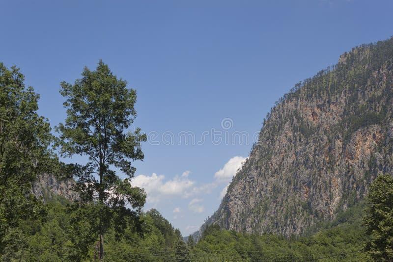 是大厦以后的山山风景 免版税库存照片