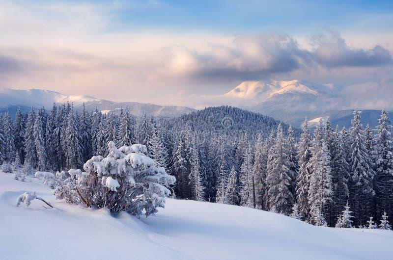 是完全地愉快的听到i,如果图象山感谢使用冬天会您的地方 图库摄影