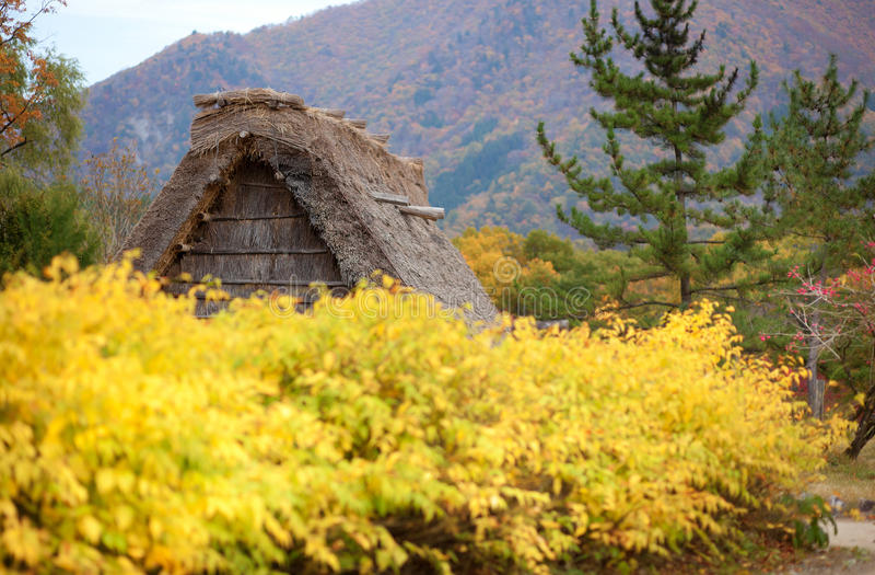 是有历史的日本shirakawa村庄 免版税图库摄影