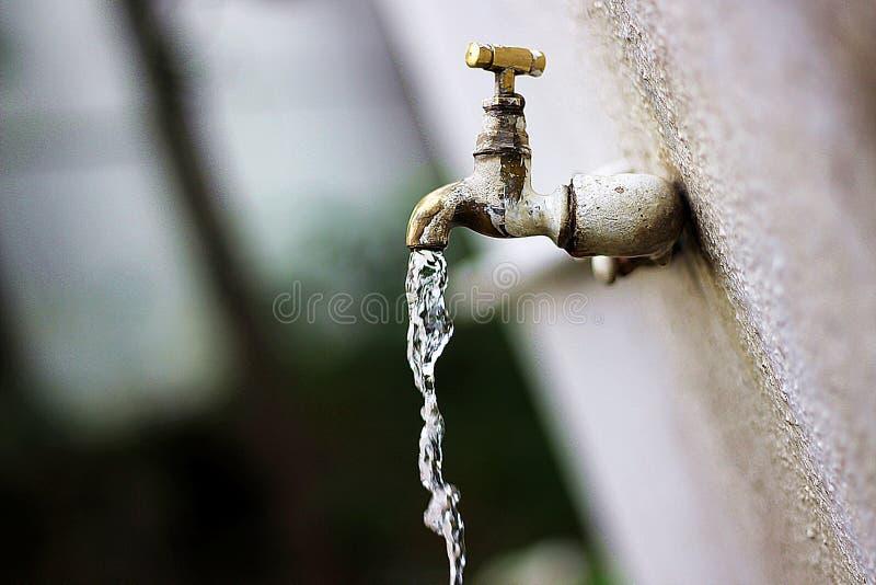 水是生活 免版税库存图片