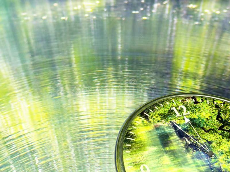 是绿色世界的时间 库存照片