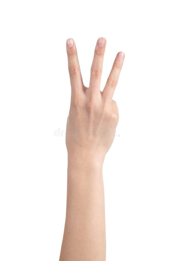 显示三个手指的妇女手 图库摄影