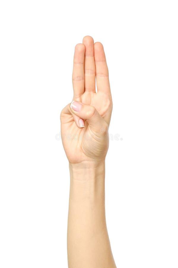 显示三个手指的妇女` s美好的手 免版税库存照片