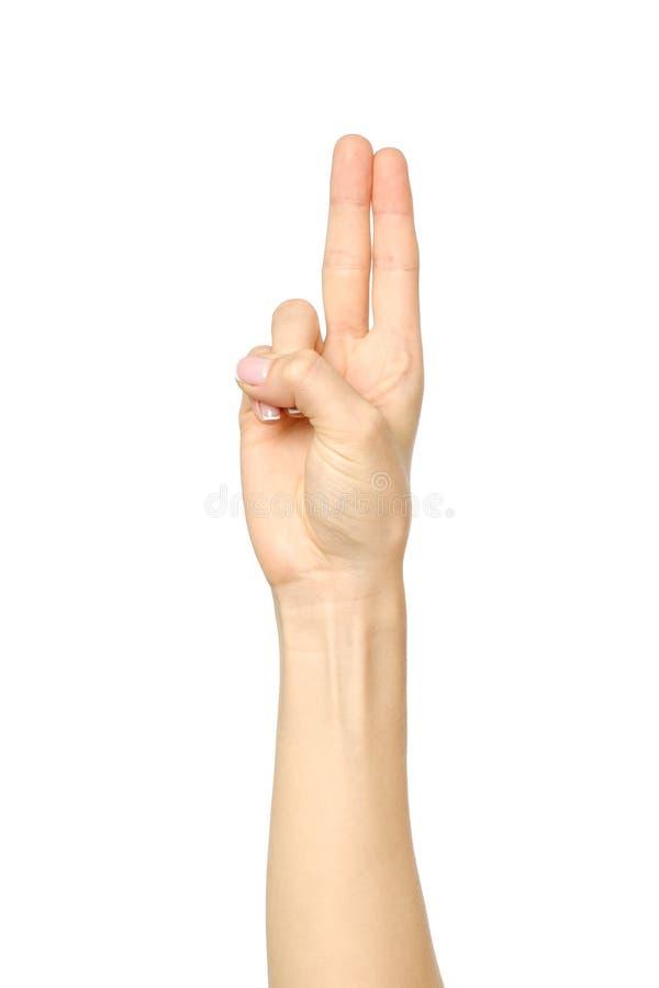 显示两个手指的妇女` s美好的手 库存图片