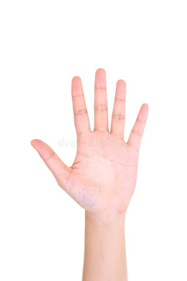 显示五个手指的妇女左手被隔绝 免版税库存照片