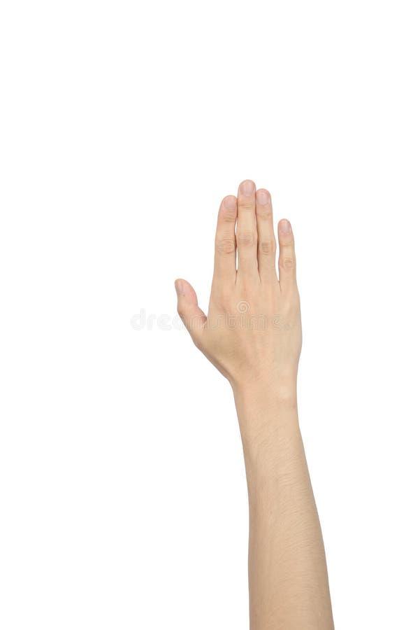 显示五个手指的手 免版税库存照片