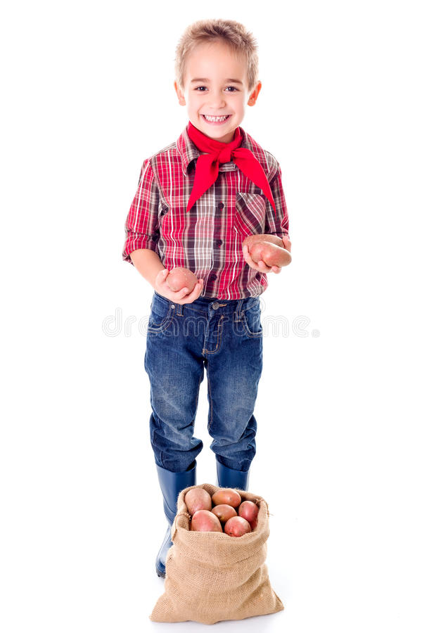 显示土豆收获的愉快的矮小的农业学家男孩 库存照片