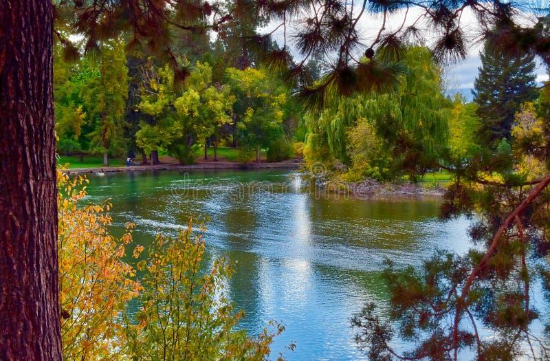 显示在镜子池塘的秋天颜色靠近弯,俄勒冈 库存照片