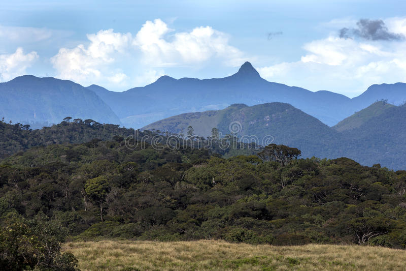 显示壮观的山脉的美丽的景色看从在霍顿附近在斯里兰卡抱怨国家公园 免版税库存图片