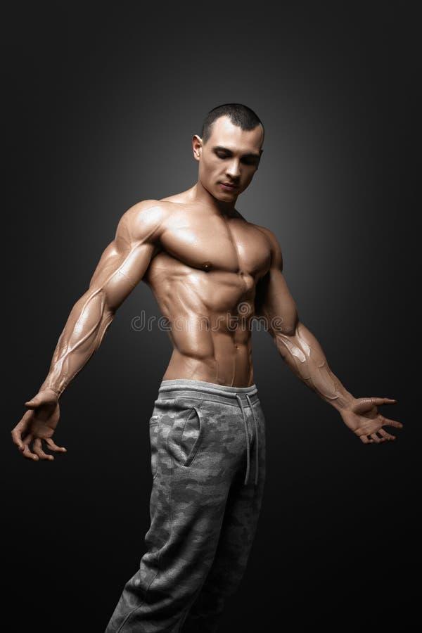 显示大肌肉的强的运动人健身模型躯干 图库摄影
