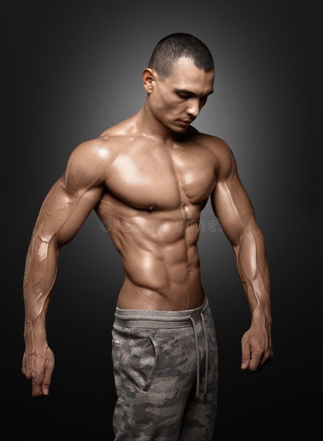 显示大肌肉的强的运动人健身模型躯干 库存图片