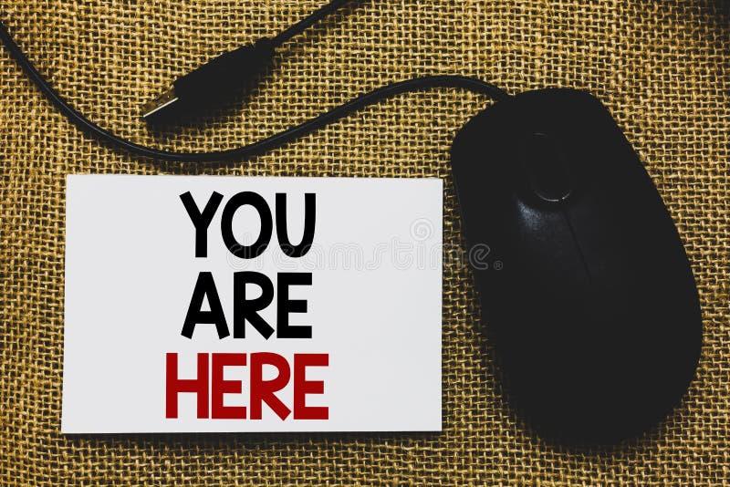 显示您的文字笔记在这里 陈列此的企业照片是你的位置参考点全球定位系统Tradi 库存图片
