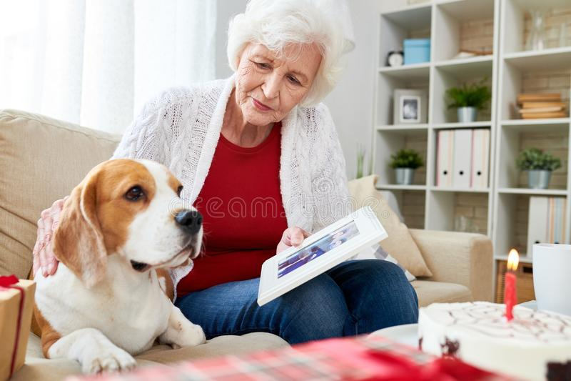 显示照片的资深妇女对狗 免版税图库摄影
