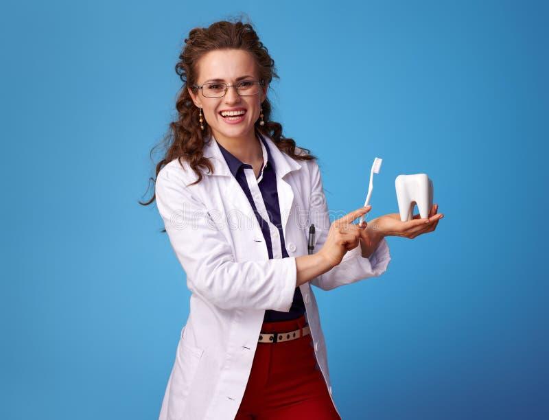 显示牙和牙刷在蓝色的微笑的医师妇女 免版税库存照片
