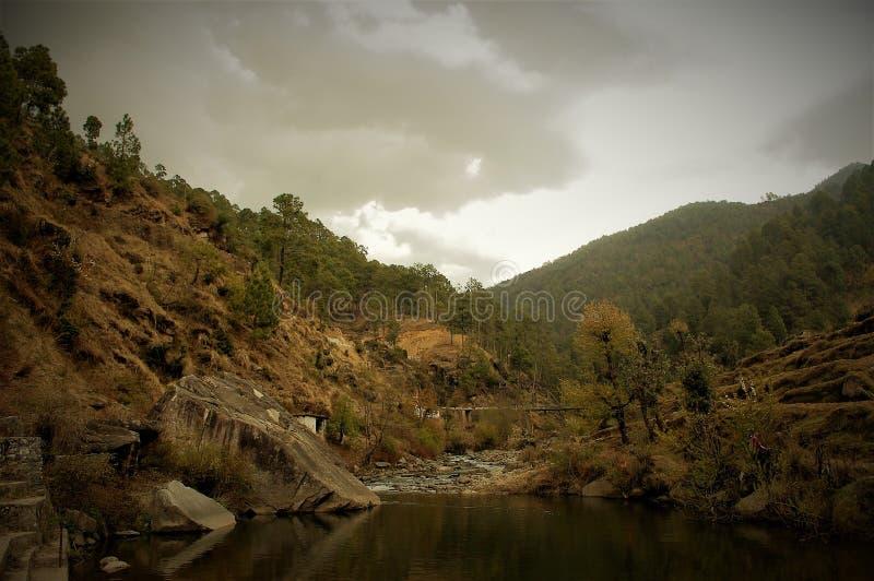 显示自然的秀丽与美好的风景的树和天空 库存照片
