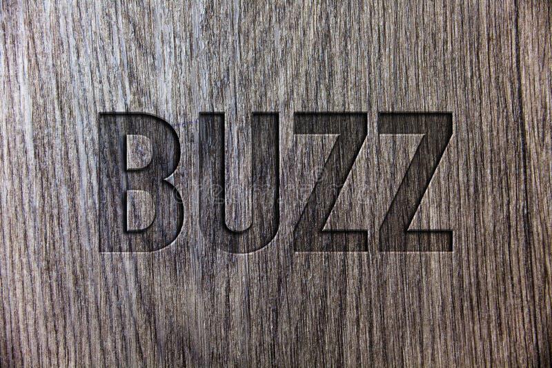 显示蜂声的概念性手文字 木企业照片陈列的嗡嗡声私语寄生虫嘶嘶响圆环Sibilation崩崩响警报哔哔的编钟 免版税库存图片