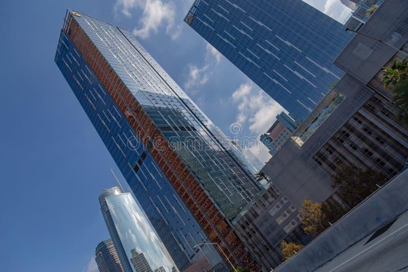 显示街市大厦的洛杉矶加利福尼亚地平线 免版税库存图片