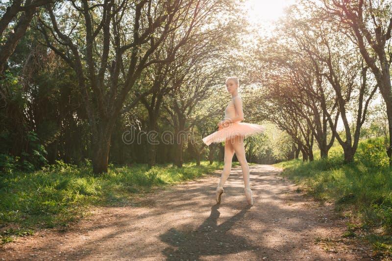 显示经典芭蕾的年轻跳芭蕾舞者摆在户外在太阳 库存照片