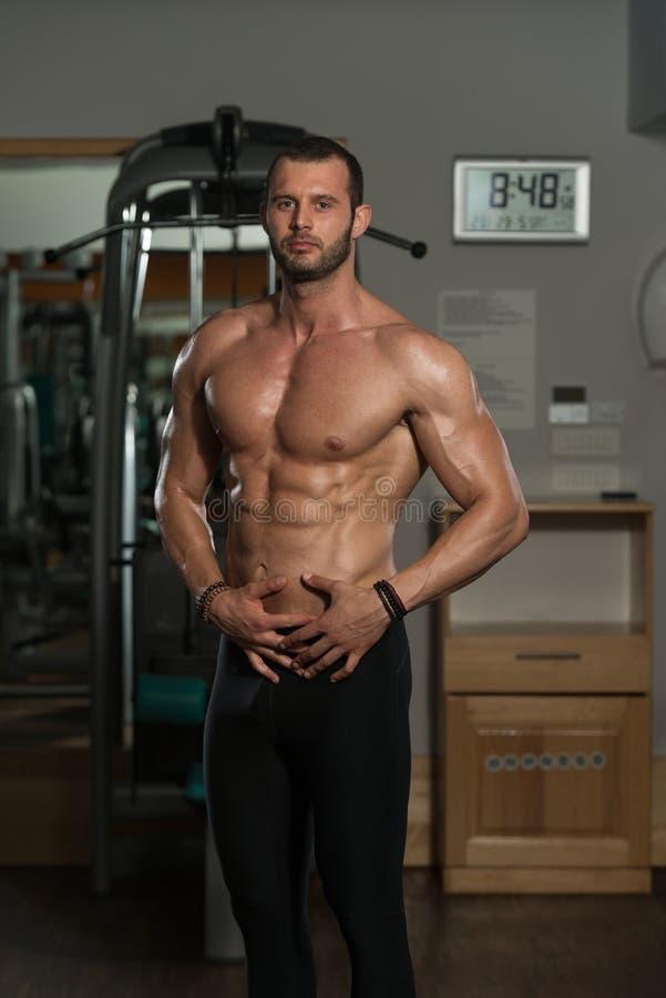 Download 显示他训练有素的身体的健身房的人 库存照片. 图片 包括有 成熟, 顿断法, 有吸引力的, 肌肉, 人们 - 62534612